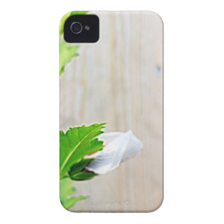 Coques iPhone 4 Fleur simple