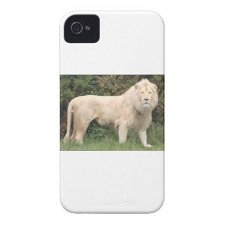 Coques iPhone 4 Lion blanc majestueux