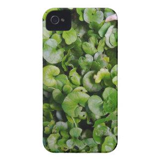 Coques iPhone 4 Repens de Dichondra