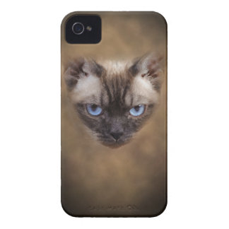 Coques iPhone 4 Visage de chat de Devon Rex