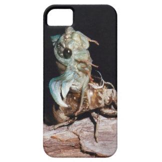 Coques iPhone 5 Case-Mate Cigale émergeant de Shell
