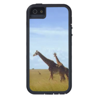 Coques iPhone 5 Case-Mate Girafes africaines de safari
