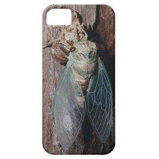 Coques iPhone 5 Case-Mate La cigale sèche ses ailes