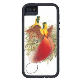 Coques iPhone 5 Case-Mate Oiseau de faune d'animaux d'oiseaux de paradis