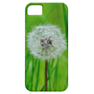 Coques iPhone 5 Case-Mate Pissenlit dans l'herbe - cas de l'iPhone 5