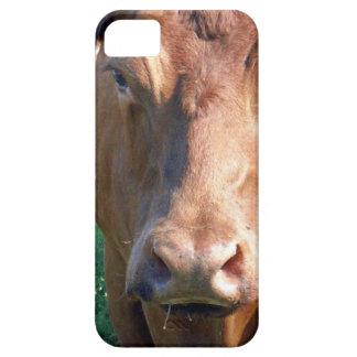 Coques iPhone 5 Case-Mate Visage de vache à Brown,