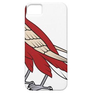 Coques iPhone 5 faucon #4