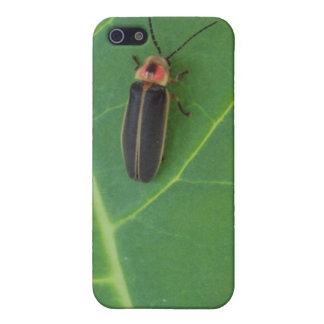 Coques iPhone 5 Insecte de foudre sur la feuille