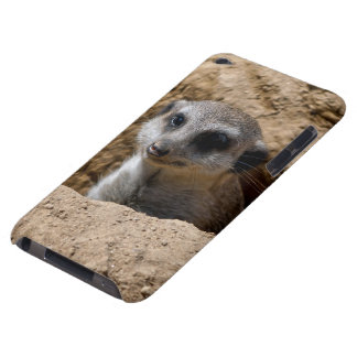 Coques iPod Touch Meerkat