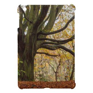 Coques Pour iPad Mini Arbre d'automne