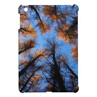 Coques Pour iPad Mini Arbres d'automne au coucher du soleil