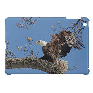 Coques Pour iPad Mini Eagle chauve sur une branche d'arbre