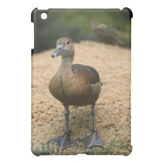 Coques Pour iPad Mini Petit canard curieux