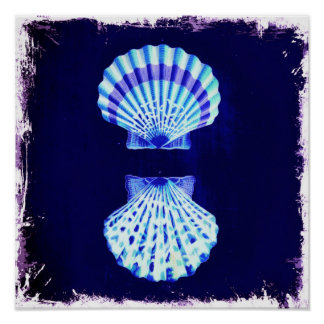 coquillages nautiques rustiques de marine de plage poster