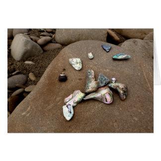 Coquilles d'ormeau sur une carte de voeux de plage