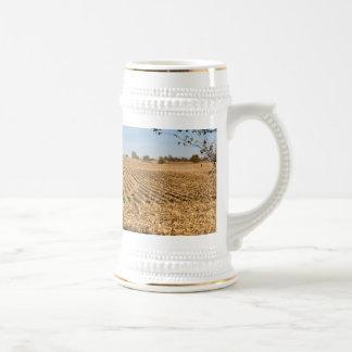 Cornfield van Iowa Panorama Bierpul