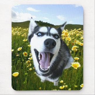 Costaud heureux dans le tapis de souris de fleurs