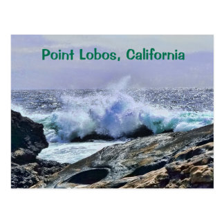 Côte centrale la Californie de Lobos de point Carte Postale