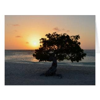 Coucher du soleil d'arbre de Divi Carte De Vœux