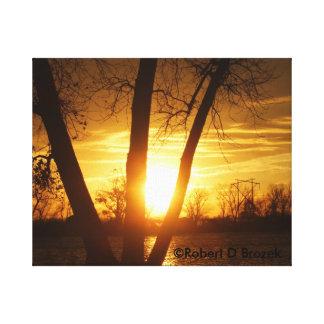 Coucher du soleil de silhouette du Kansas, toile
