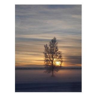 Coucher du soleil d'hiver à pi Wainwright Carte Postale