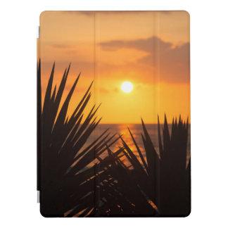 Coucher du soleil protection iPad pro