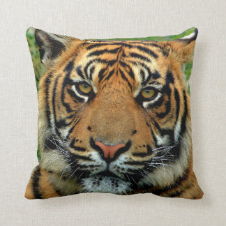 Coussin Carreau de tigre