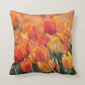 Coussin Carreau de tulipes