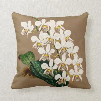 Coussin Copie botanique d'orchidées blanches, arrière -