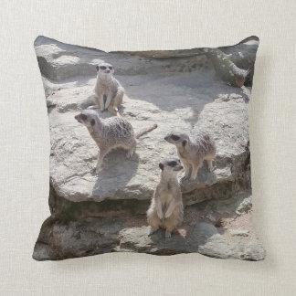 Coussin de Meerkat