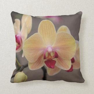 Coussin d'or d'orchidée