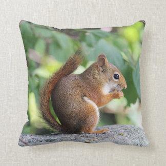 Coussin Écureuil rouge