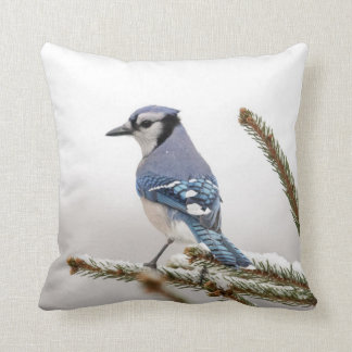 Coussin Geai bleu en hiver