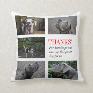 Coussin great dane