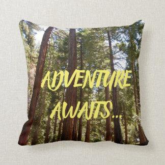Coussin L'aventure attend le séquoia