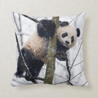 Coussin Panda de bébé dans l'arbre