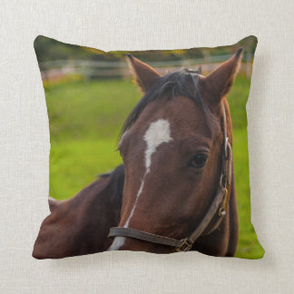 Coussin Portrait de cheval de Brown
