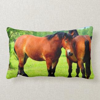 Coussin Rectangle Beaux chevaux de trait de baie dans le pré vert