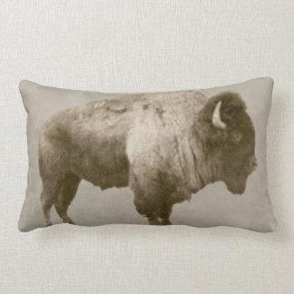 Coussin Rectangle Bison américain