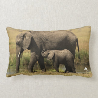 Coussin Rectangle Éléphants africains