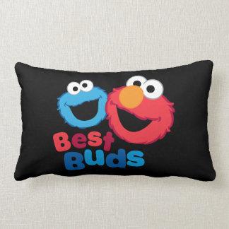 Coussin Rectangle Elmo et biscuit Besties