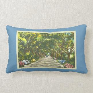 Coussin Rectangle Rétro route pittoresque bleue de la Floride Largo