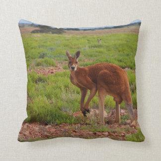 Coussin rouge australien de kangourou