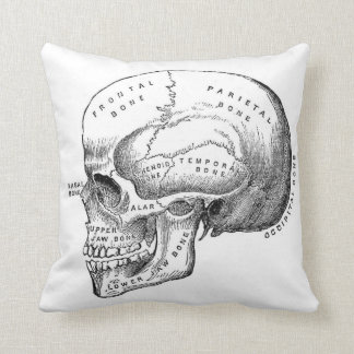 Coussin squelettique vintage d'illustration de
