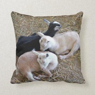 Coussin Trois chèvres de bébé
