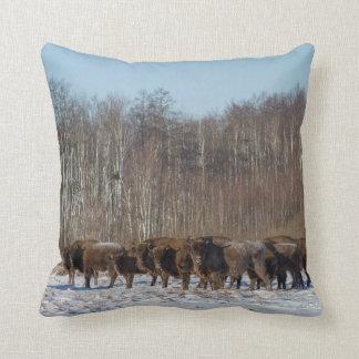 Coussin Troupeau de bison