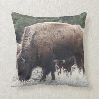 Coussin Un troupeau de bison de Brown frôlent dans un pré