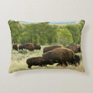Coussins Décoratifs Photographie d'animal de nature de bison du