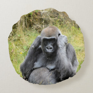 Coussins Ronds gorille 7152