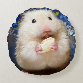 Coussins Ronds Hamster syrien pelucheux Kokolinka mangeant une
